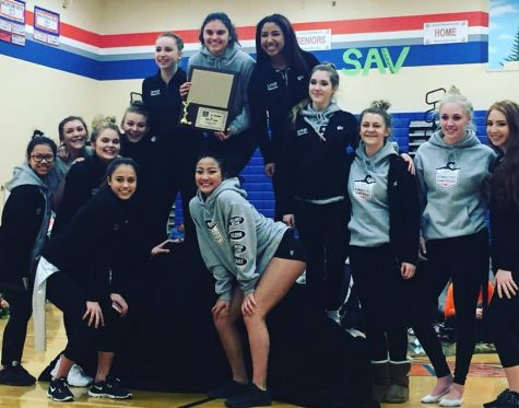 Spartan Women's swim and dive get 2nd at District Championship